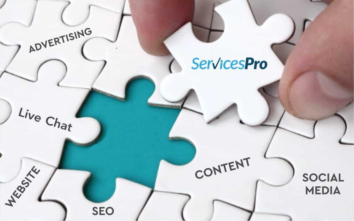 Complete Online Presence Management